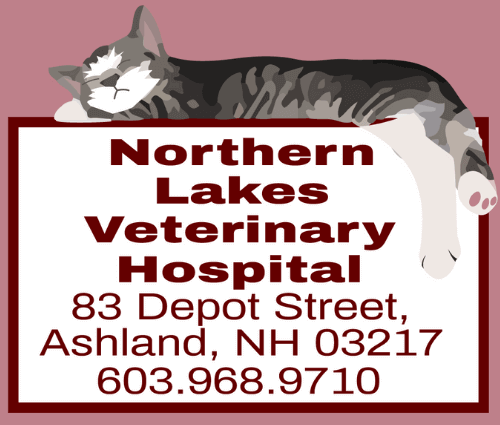 Northern Lakes Veterinary Hospital